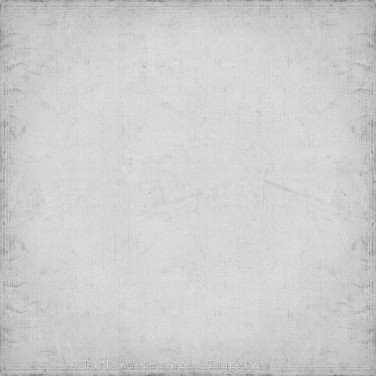 soft gray wallpaper