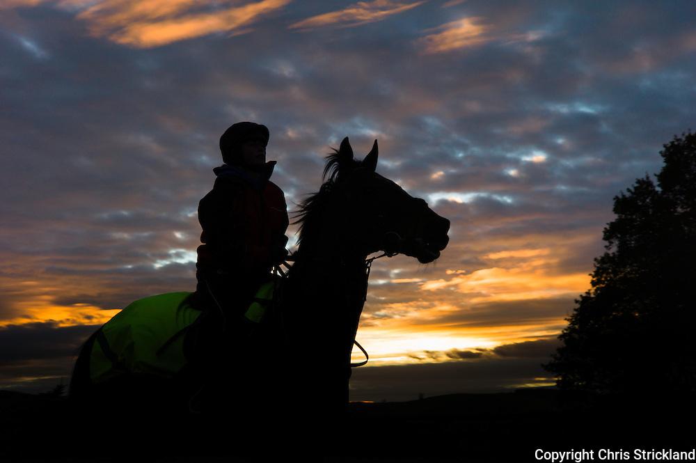 Bonchester Bridge, Hawick, Scottish Borders, UK. 25th November 2015. Jockey Joanna Walton schools racehorse 'Oscar Stanley' at sunset in the Scottish Borders.