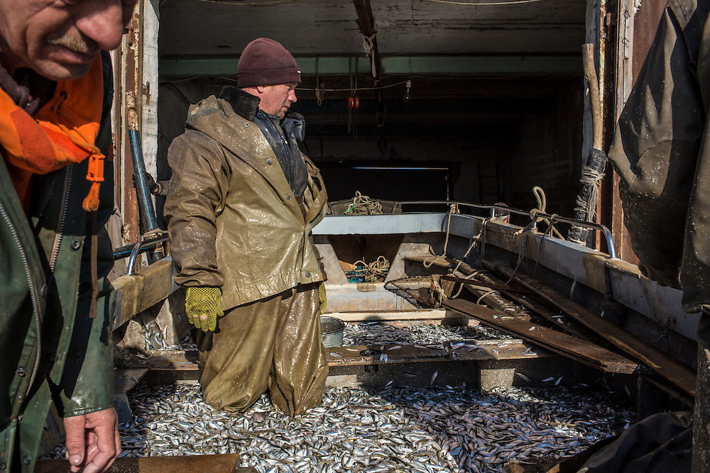 Fishermen return with their catch on Saturday, April 11, 2015 in Siedove, Ukraine.