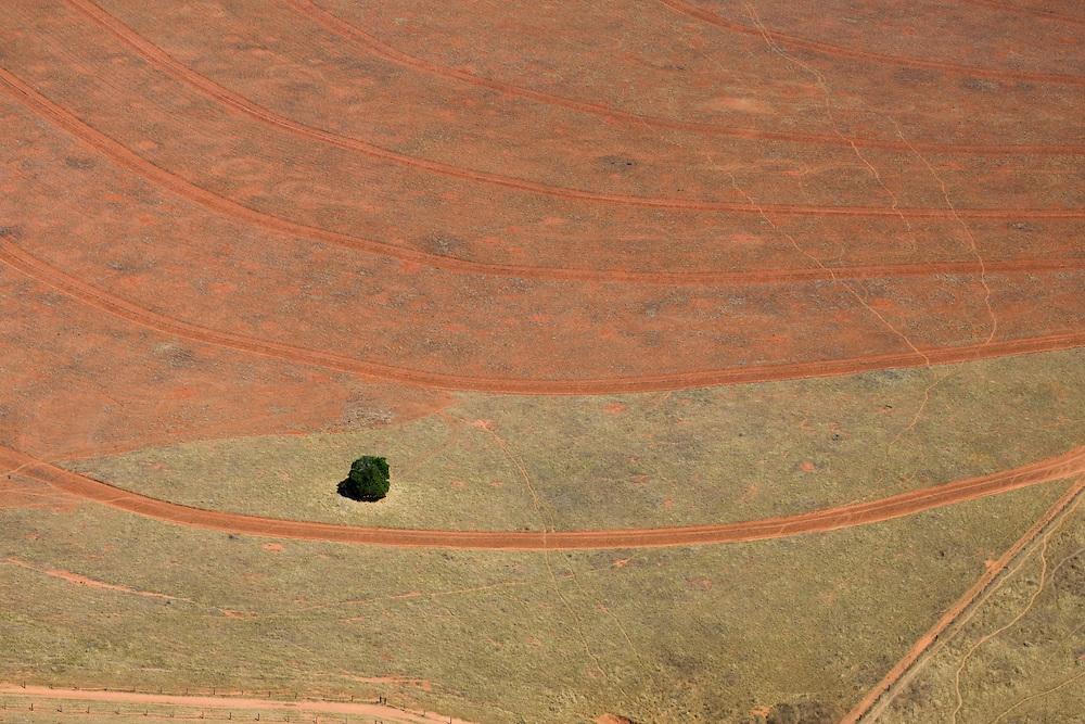Fazenda Chapui (cattle farm) in Mato Grosso Brazil, August 7, 2008. Daniel Beltra/Greenpeace