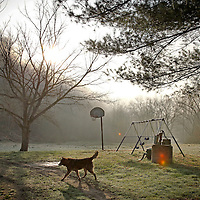 A basketball goal and swingset sits in the back yard of Zella Webb's property, ready for her grandchildren at a moment's notice in Wild Cat, Ky., on 3/19/10. Photos by David Stephenson