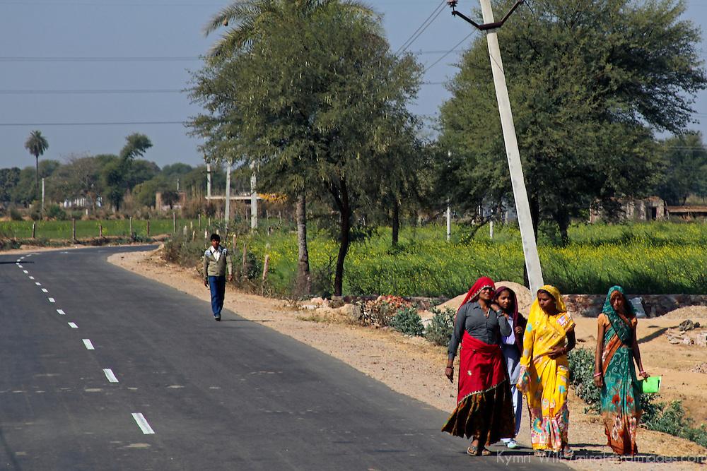 Asia, India, Rajasthan. Women walking along roadside in Rajasthan in colorful saris.