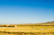 Haystack, Big Hole Valley, Land of 10,000 Haystacks made with Beaverslide, Southwest Montana