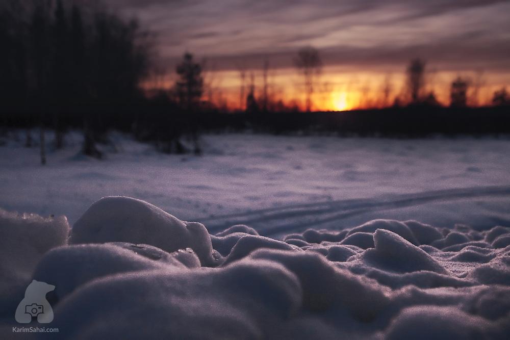 Arctic landscape at dusk, Lapland, Sweden.
