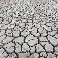 Cayman Islands, Little Cayman Island, Cracked mud of dry lake bottom at Booby Pond Preserve