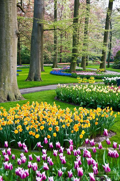 Keukenhof Spring Tulip Gardens in Lisse, the Netherlands is the world's largest tulip garden.