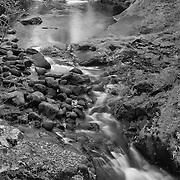 Sweet Creek Lower Cascade Falls - Mapleton, Oregon - Black & White