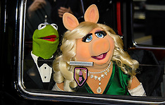 MAR 24 2014 Muppets Most Wanted Screening