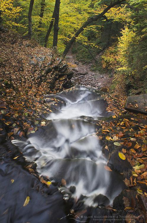 Ganoga Falls, Ricketts Glen Pennsylvania State Park Pennsylvania