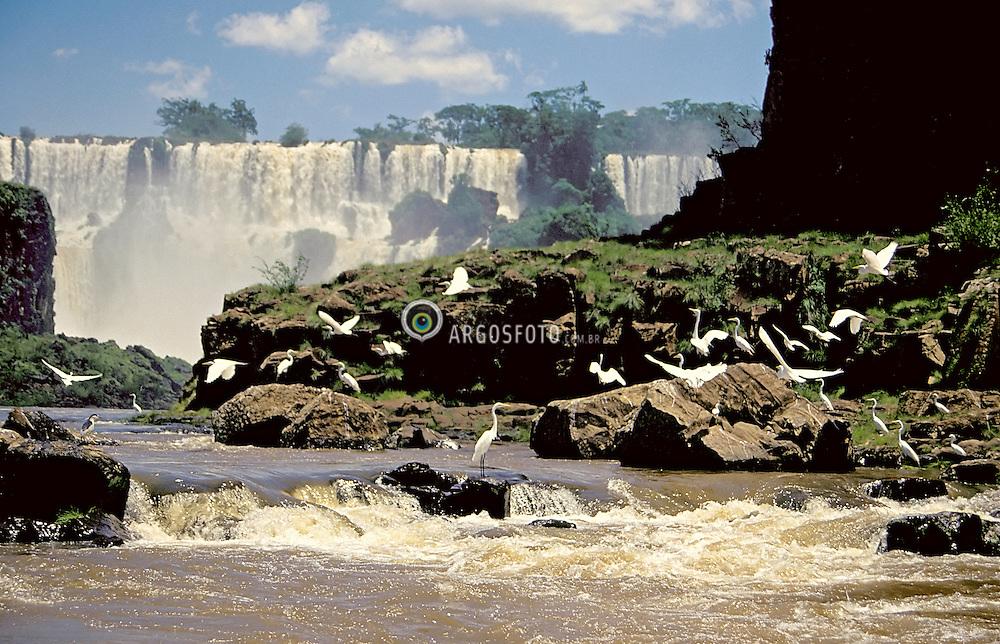 Foz do Iguacu, Parana, Brasil..As Cataratas do Iguacu (espanhol: Cataratas del Iguazu) sao uma reuniao de quedas no Rio Iguacu (Bacia do Parana), localizam-se dentro do Parque Nacional do Iguacu no Brasil e no Parque Nacional Iguazu na Argentina que, somados, correspondem a 250 mil hectares de floresta protegida. Os parques tanto brasileiro como argentino passaram a ser considerados Patrimonio da Humanidade em 1984 e 1986, respectivamente. Historicamente, as Cataratas do Iguacu foram descobertas em 1542 por Dom Alvar Nunez Cabeza de Vaca. O nome Iguacu vem das palavras da língua guarani y (agua) e guacu (grande)./ Iguazu Falls (Spanish: Cataratas del Iguazu are waterfalls of the Iguazu River located on the border of the Brazilian state of Parana (in the Southern Region) and the Argentine province of Misiones. The Falls are shared by the Iguazu National Park (Argentina) and Iguacu National Park (Brazil). These parks were designated UNESCO World Heritage Sites in 1984 and 1986 respectively. The name Iguazu comes from the Guarani words y (water) and guasu (big). The first European to find the falls was the Spanish Conquistador Alvar Nunez Cabeza de Vaca..Foto © Marcos Issa/Argosfoto.