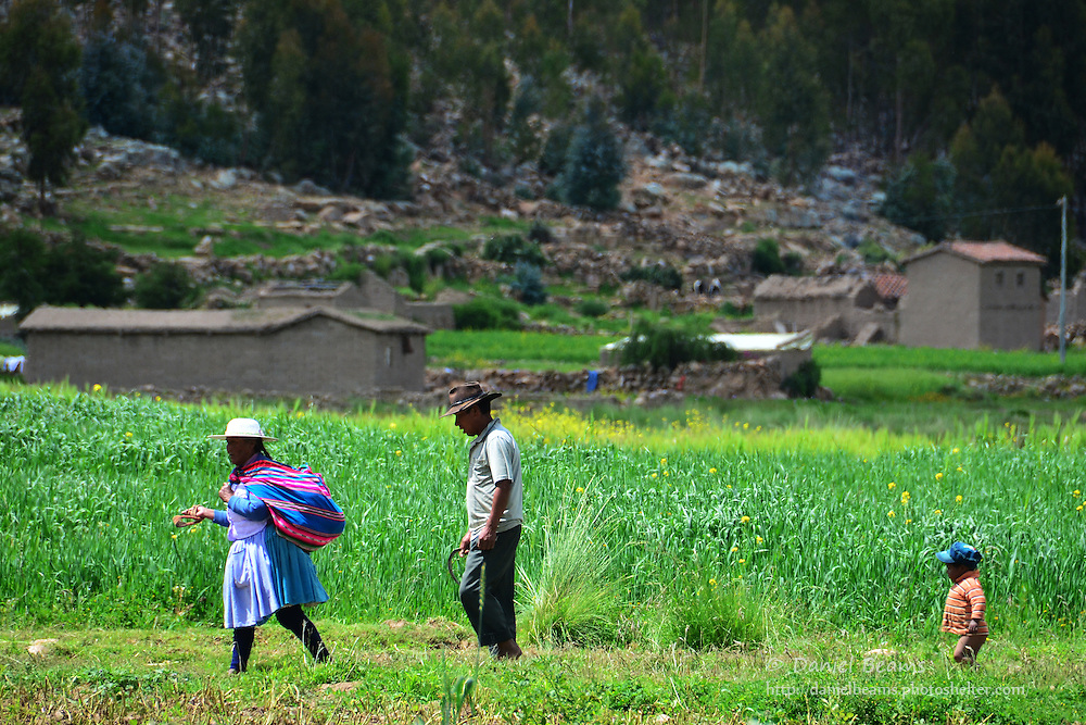 Quechua family walking in a field near Vacas, Cochabamba, Bolivia