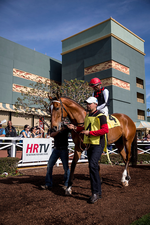 February 01 2015: Texas Red and Kent Desourmeaux at Santa Anita Park in Arcadia CA. Alex Evers/ESW/CSM