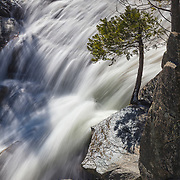 Tamarack Creek creates a waterfall as it races over rocks in an area known as The Cascades in Yosemite National Park, California.