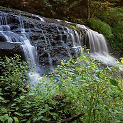 Hunters Run drops more than 20 feet (7 meters) at Springfield Falls, which is surrounded by summer wildflowers, in western Pennsylvania.