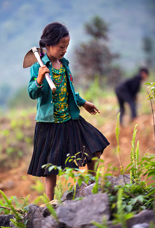 A girl working in the corn fields near Ha Giang, Vietnam.