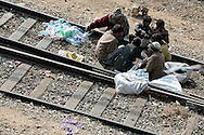 Until the 4pm train arrives, children play cards and count the bottles they were able to get when the last train stopped at the station.  Children, some who have run away from their families, find themselves living homeless on the train tracks waititng for the next train to arrive at the train station in Jaipur, India.  Once the train arrives they raid the train looking for plastic bottles that they can then sell.  Most will make about $1.50/day but spend most of it on glue which they are most addicted to.