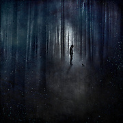 Surreal abstract forest scene with a man and a raven