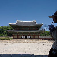 South Korea, Seoul, Tour guide leaks tourist grouip through Changdeokgung (Changdeok Palace or Palace of Prospering Virtue)