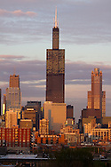 Catching the last rays of the warm summer sun, the Sears Tower (now named the Willis Tower), stands high above the Chicago, IL neighborhoods as seen from the west side of the city.