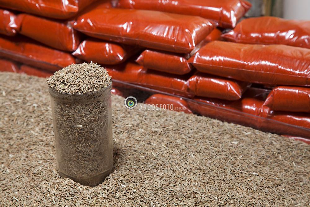 Especiarias no Mercado publico de Serra Talhada. O cominho (Cuminum cyminum)  e o colorau/ Spice at Sierra Talhada public market. The cumin (Cuminum cyminum) and paprika