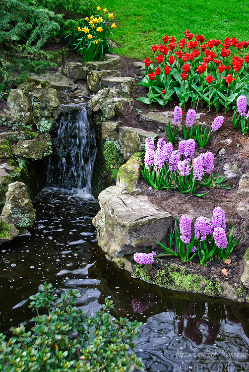 Tiny waterfall at Keukenhof Spring Tulip Gardens, Lisse, The Netherlands.