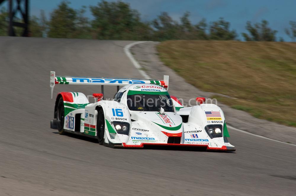 #16 Dyson Racing Team Lola B09 86 Mazda: Chris Dyson, Guy Smith