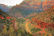 The main road through Zion National Park, Utah Rt. 9, forms a horseshoe curve in the bottom of a canyon. The red rocks in the canyon really stand out in this HDR view, taken close to sunset.