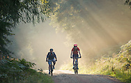 Cyclists in misty forest, Kirkhill, Aberdeenshire and Moray District,Forestry Commission, Scotland