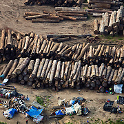 Aerial view of a log sorting yard on the Congo River near Kinshasa, DRC, May 12, 2009. ©Daniel Beltra