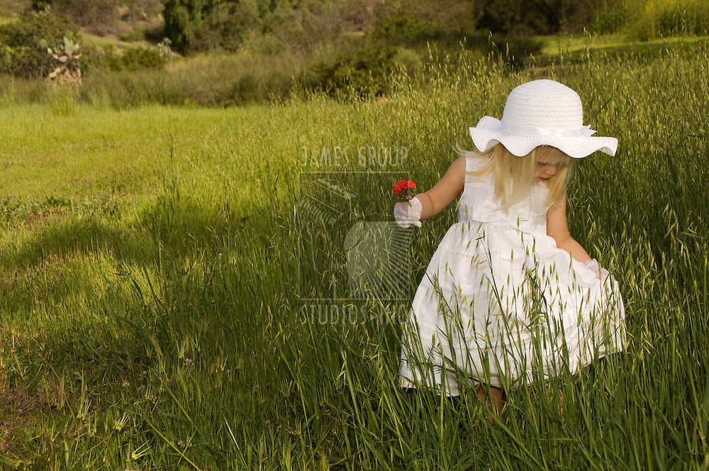 Girl in a white dress holding a flower in a field of grass