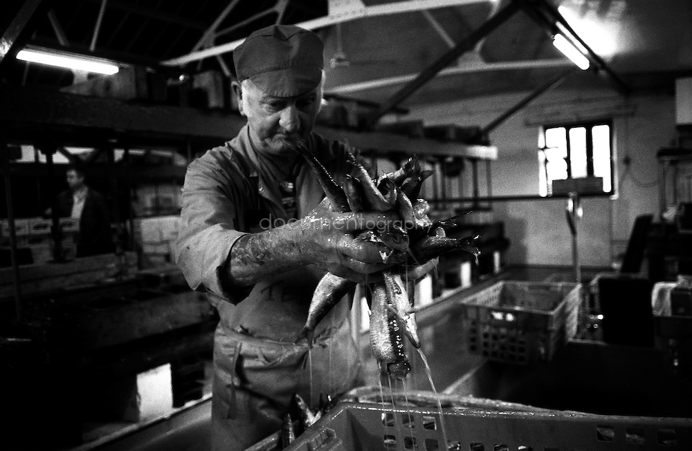 Terry Tonkan, 73 years old, is a former miner. He has been working at the Pilchards Works salting and pressing fish for 38 years. He is very sad to see it close down.