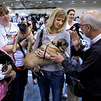The Blessing of the Pugs by Fr. John Allen, Pastor of St. Marks Episcopal Church in South Milwaukee..The 6th Annual Milwaukee Pug Fest was held Sunday May 16. 2010 at the Milwaukee Sports Complex in Franklin, Wisconsin.