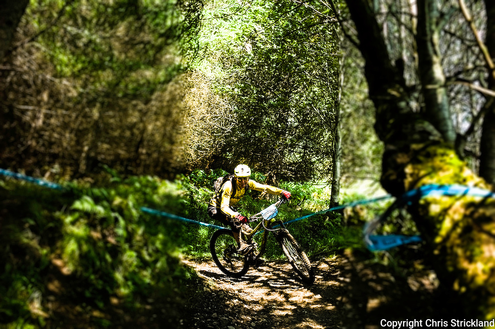 Glentress, Peebles, Scotland, UK. 23rd August 2015. Mountain bikers compete in the King & Queen of the Hill 40km enduro race in the Scottish Borders.