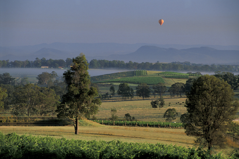 near Cessnock.The Lower Hunter Valley.New South Wales.Australia