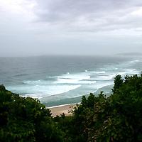 Byron Beach with trees