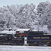 Photo of train steam engine parked at Grand Canyon National Park railroad covered with snow and snow covered trees in the background by Leandra Melgreen Lewis.