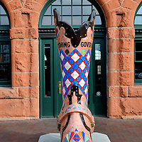 Painted Cowboy Boot in Front of Cheyenne Depot Museum in Cheyenne, Wyoming<br /> Wyoming is the &ldquo;Cowboy State.&rdquo; Therefore, it is fitting the capital city of Cheyenne has eight-foot cowboy boots on numerous street corners. The sculptures were colorfully painted in 2004 during a Depot Museum fundraiser called, &ldquo;These Boots are Made for Talkin.&rsquo;&rdquo; This one in the Cheyenne Depot Plaza is a tribute to past Wyoming governors. The design was painted by Alice Reed. The city also has 12 western outfitters. The most famous store is near this artwork. The Wrangler has been selling &ldquo;ranchwear&rdquo; since 1943.