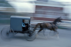 Fast moving amish buggy drives down main street of Intercourse, PA.