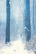Male on a forest path in snow storm