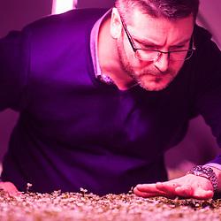 London, UK - 21 February 2014: Richard Ballard checks the crops at the Zero Carbon Food - Growing Underground tunnels in Clapham