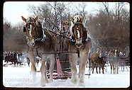 07: WINTER CARNIVAL SLEIGHS, ICE SOFTBALL