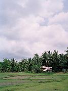 Small hut with satellite dish on North Andaman Island