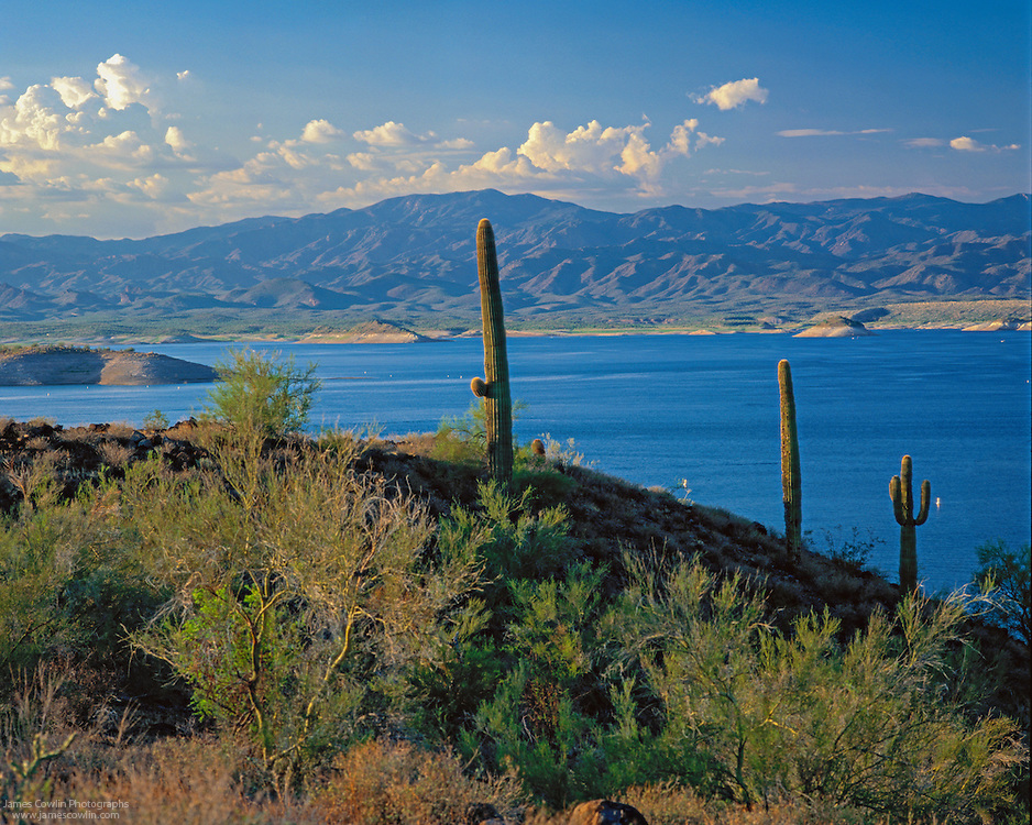 Lake Pleasant is a reservoir on the Agua Fria River in the Sonoran Desert near Phoenix, Arizona.