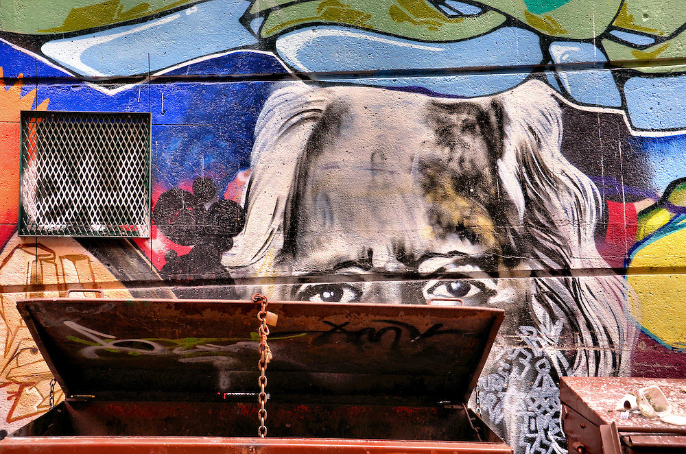 Peering Eyes Mural Over Dumpster by Cold World Media in ...