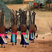 Hmong women from the mountaintop village of Ban Mai, Laos, head home with their baskets full of firewood, a daily chore, for cooking and heating their homes in December 2000. Tsong Tong Vang was born in this remote Hmong village in northern Laos.