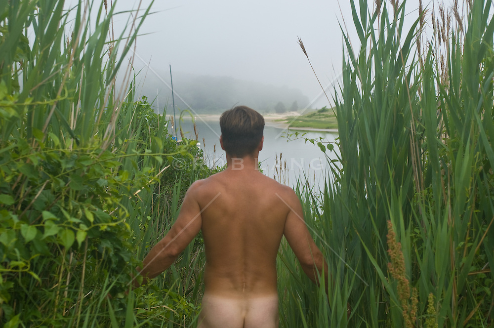 Nude man walking through reeds to a mist covered bay