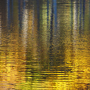 &quot;Striking Gold&quot; <br /> <br /> Beautiful golden fall reflections on Huron River!