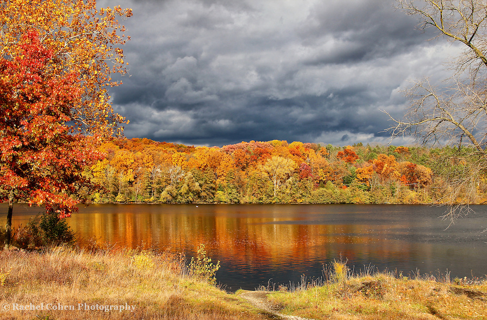 &quot;Within Autumn's Grasp&quot;<br /> <br /> A Michigan landscape comes alive in autumn with vibrant foliage, colorful reflections on water, and stormy skies above!!<br /> <br /> Autumn Landscapes by Rachel Cohen