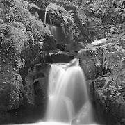 Sweet Creek Falls - Mapleton, Oregon - Infrared Black & White