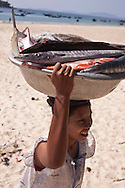 A woman transports fish from a boat in Tezit Beach, Tanintharyi Region, Burma.<br />